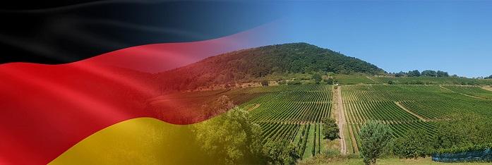 Niemieckie wina